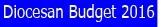Diocesan Budget (2016) Logo