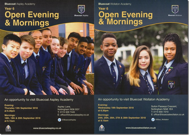 Bluecoat Academy Flyer (2018)