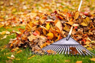 Image result for church autumn clean